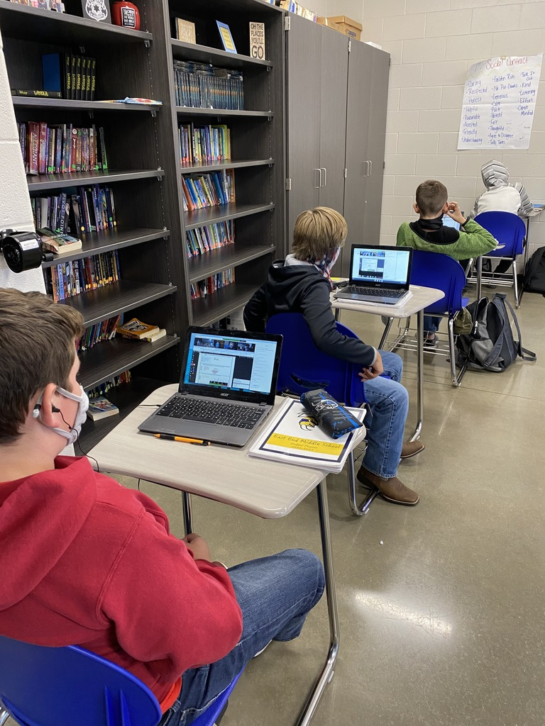 EEM: 6th Grade Virtual Literature Circles