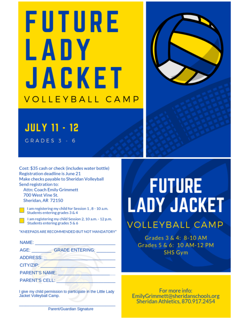 Image of Volleyball Camp Flyer